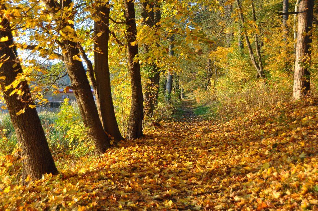 Jesienny wypoczynek Villa Skomanda w Augustowie