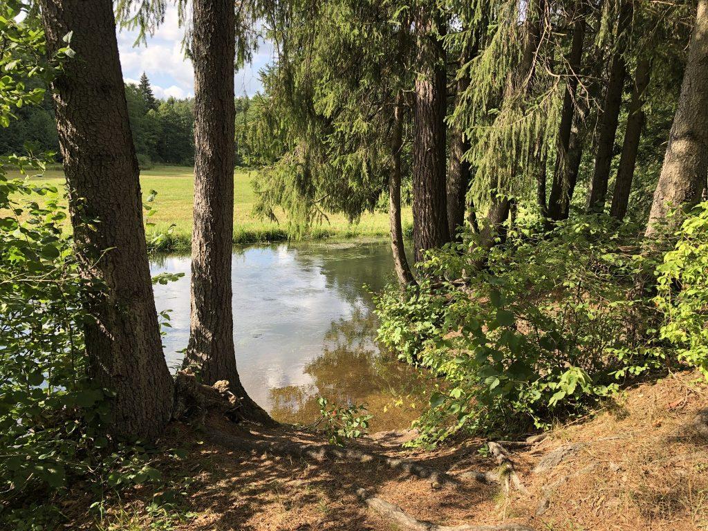 Wypoczynek pośród jezior i lasów Villa Skomanda