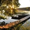 Indian Summer in Augustów Primeval Forest