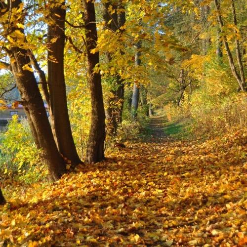 Aktywna jesień nad jeziorami