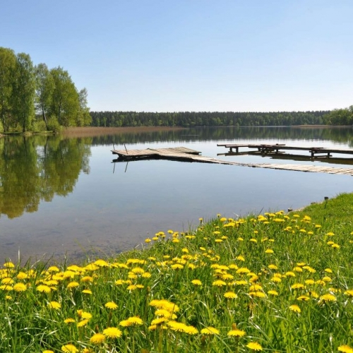 Spring relaxation among lakes