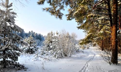 Zimowy wypoczynek w Augustowie